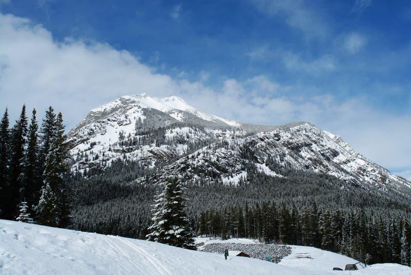 Canadese rockies van de winter royalty-vrije stock afbeelding