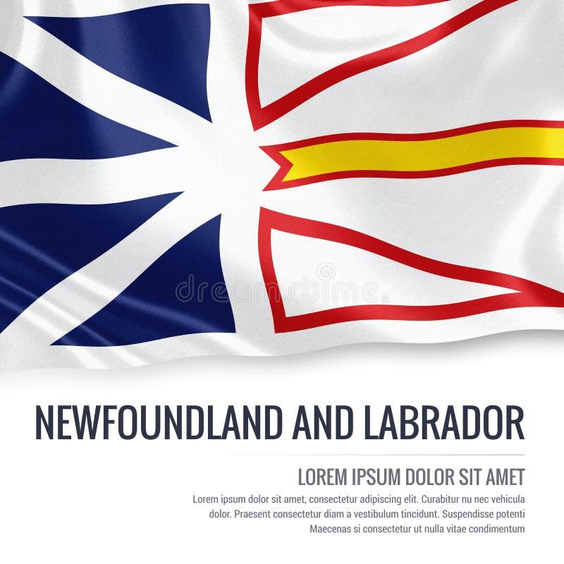 Canadese staat Newfoundland en de vlag van Labrador vector illustratie