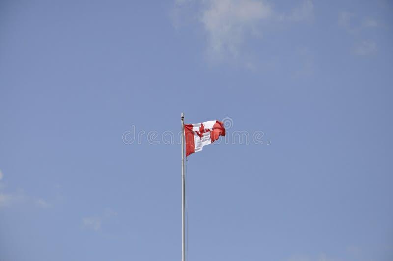 Canadese vlag in de wind royalty-vrije stock afbeeldingen