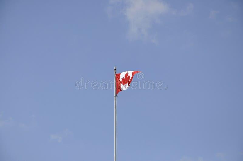 Canadese vlag in de wind stock foto's