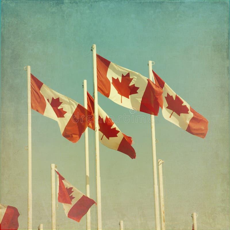 Canadese Vlaggen stock afbeelding