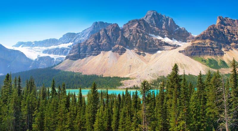 Canadese wildernis in Banff Nationaal Park, Canada stock afbeeldingen