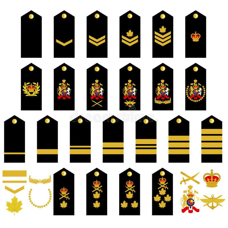 Canadian Army Insignia Stock Vector. Illustration Of White