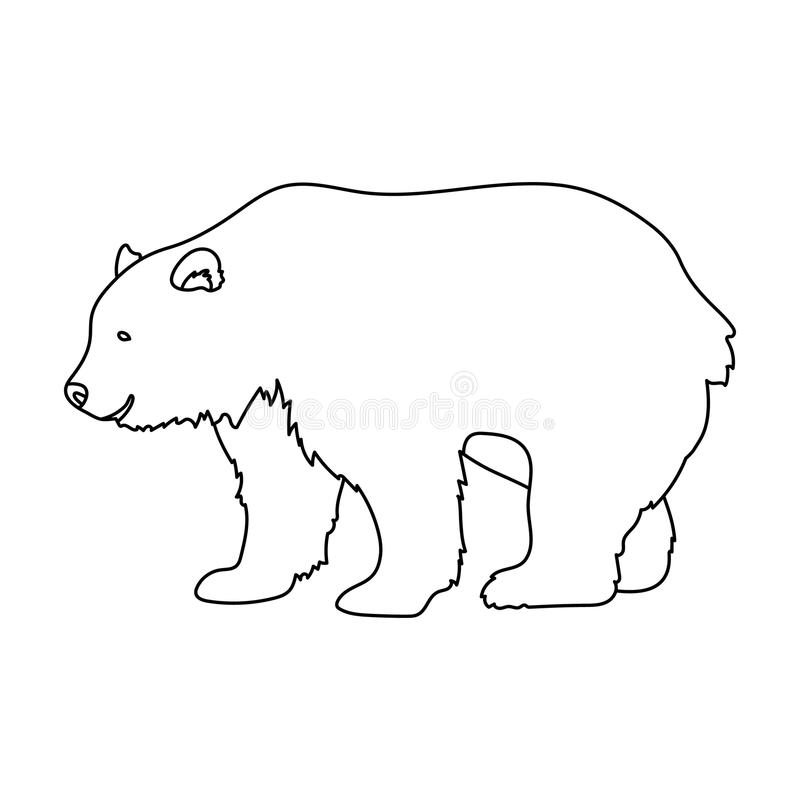 Canadian bear. Canada single icon in outline style vector symbol stock illustration web. Canadian bear. Canada single icon in outline style vector symbol stock stock illustration