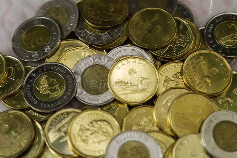 Canadian $1 dollar coins or loonie and $2 dollar coins or toonie. Canadian $1 and $2 dollar coins. The Canadian one dollar coin, commonly called the loonie. It royalty free stock photos