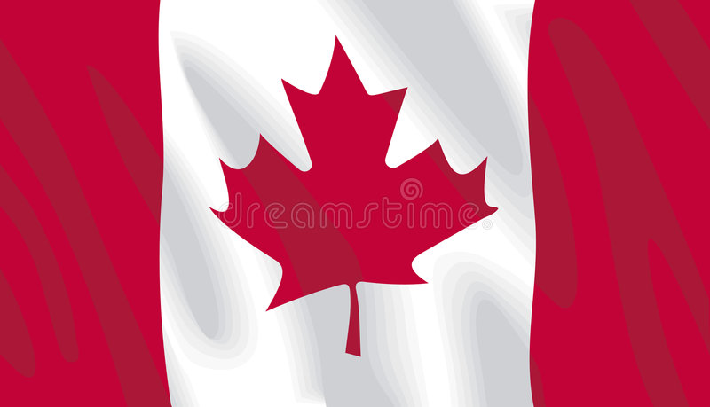 Canadian Flag. Waving Canadian flag in vector format royalty free illustration
