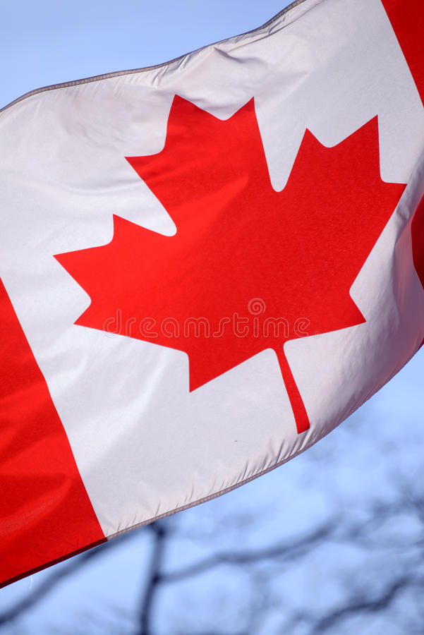 Canadian flasg waving stock image