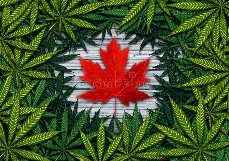 Canadian Cannabis And Marijuana. Canadian marijuana concept and Canada cannabis law and legislation social issue as medical and recreational weed usage icon as a vector illustration