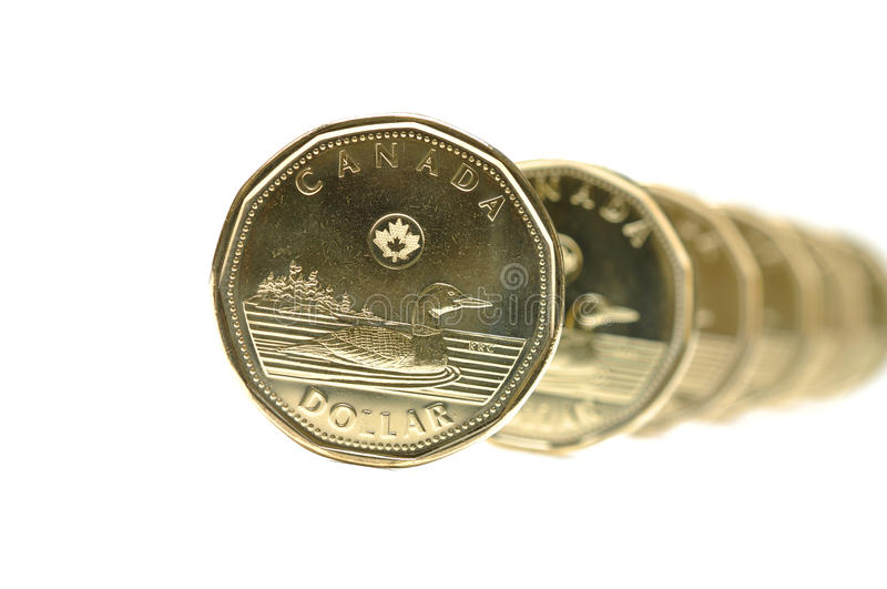 Canadian One Dollar Coin. Pattern stock photos