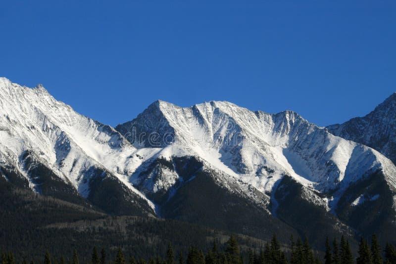 Download Canadian Rockies stock image. Image of scene, scenery - 7985327
