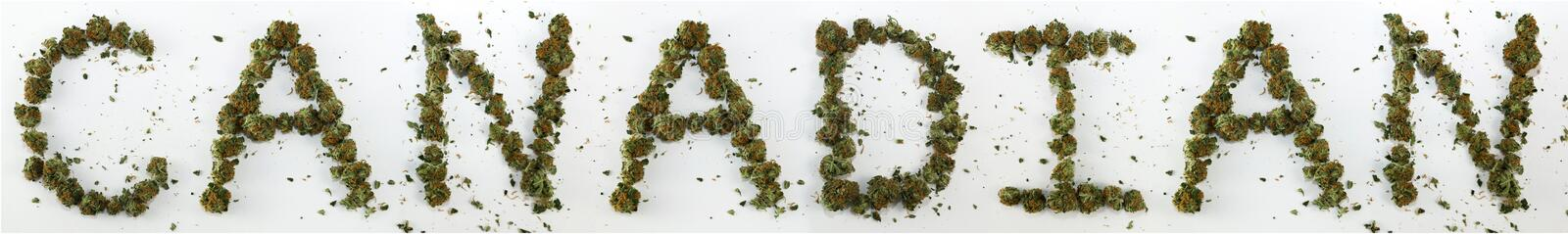Canadian Spelled With Marijuana. The word Canadian spelled out with real marijuana stock image