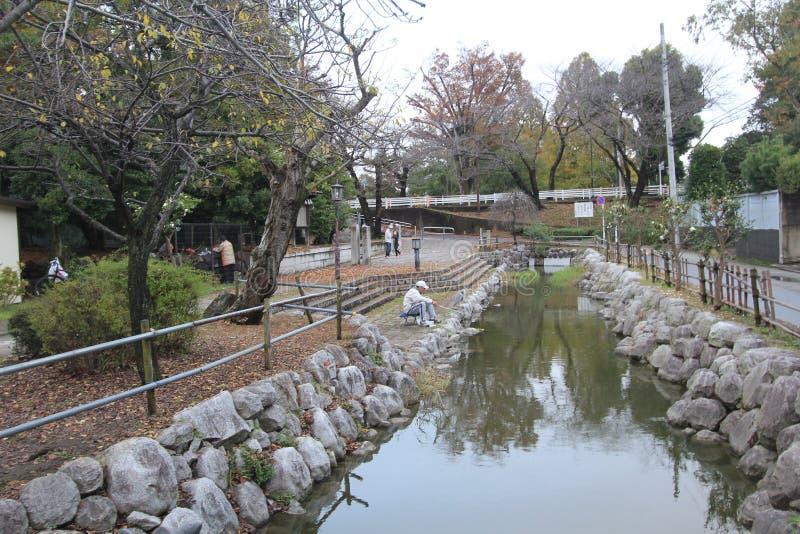 Canal, árbol, agua, planta, banco, arroyo, canal, reflexión, reconstrucción, río imágenes de archivo libres de regalías