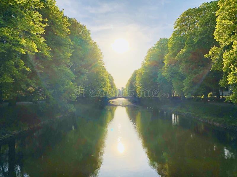 Canal avec de vieux arbres de châtaigne et ciel bleu au coucher du soleil photo stock