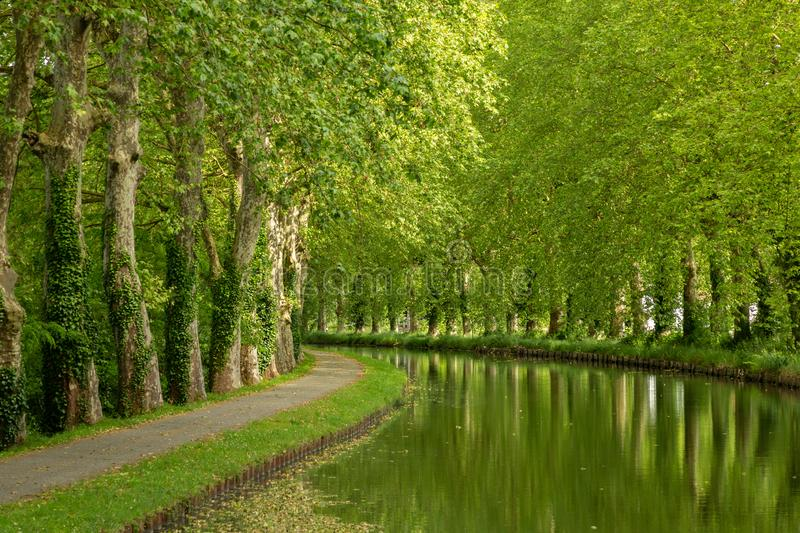 Canal bordé d'arbres de la Garonne en France photos libres de droits