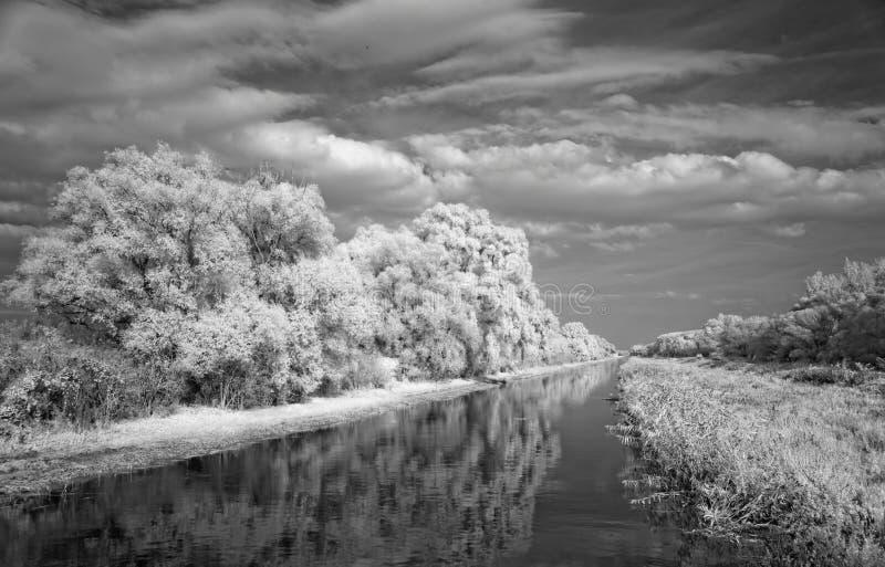 Canal cosido con los árboles, infrarrojos imagen de archivo libre de regalías