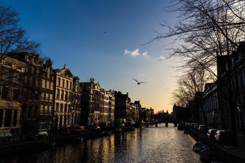 Canal d'Amsterdam et les maisons de canal photo stock