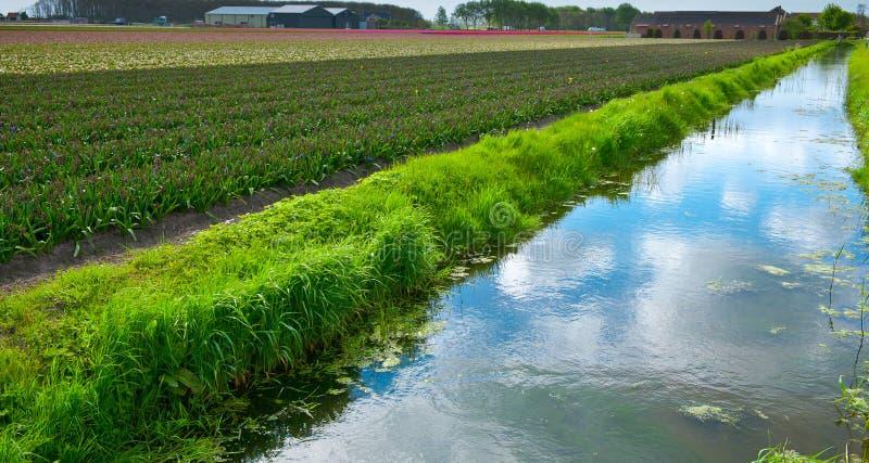 Canal d'irrigation image libre de droits