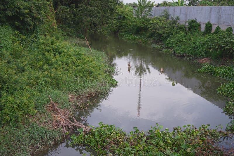 Canal da drenagem das águas residuais das áreas de comunidade em Tailândia foto de stock