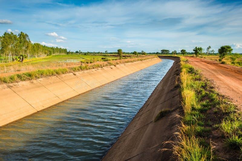 Canal da irrigação na exploração agrícola do arroz imagem de stock