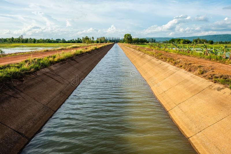Canal da irrigação na exploração agrícola do arroz foto de stock royalty free