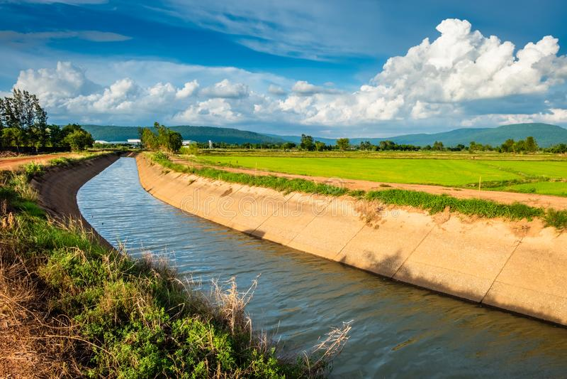 Canal da irrigação na exploração agrícola do arroz imagem de stock royalty free