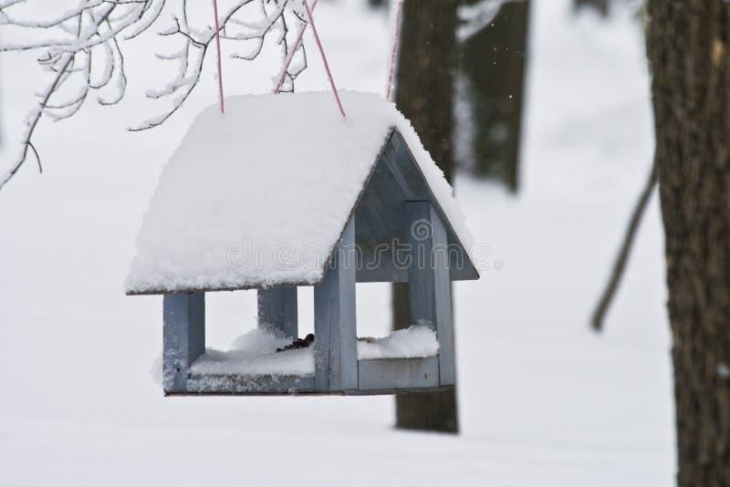 Canal de alimentación de madera para los pájaros que cuelgan en árbol en invierno fotos de archivo