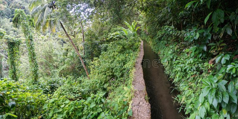 Canal de Beauregard in Martinique royalty free stock images