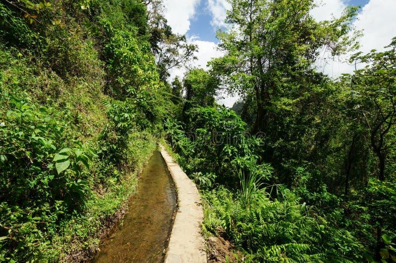 Canal de Beauregard in Martinique stock photos