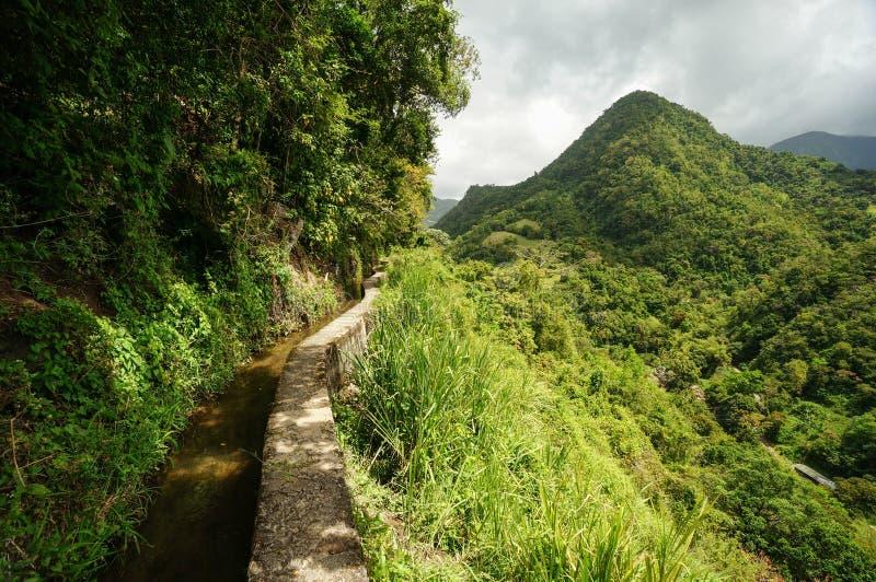 Canal de Beauregard in Martinique stock images
