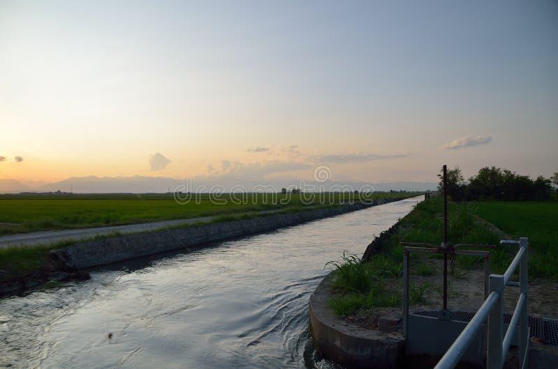 Canal de irrigação perto dos campos do arroz imagem de stock royalty free