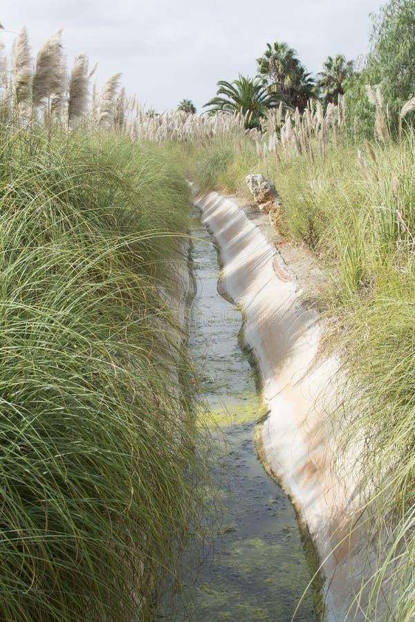 Canal de irrigación imagen de archivo libre de regalías