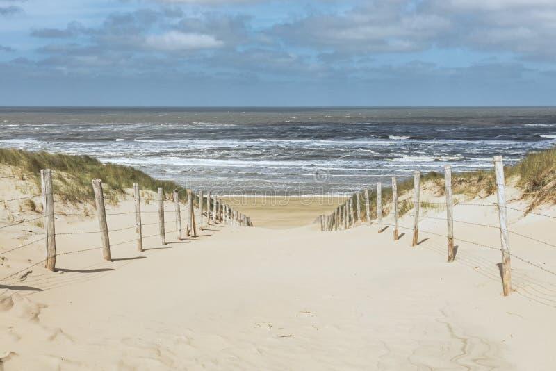 Canal de la trayectoria las dunas a la playa de Zandvoort, Países Bajos fotos de archivo libres de regalías