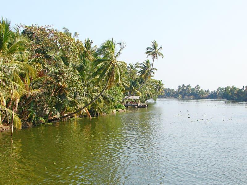 Canal de mare avec les palmiers incurvés, Kerala, Inde photos libres de droits