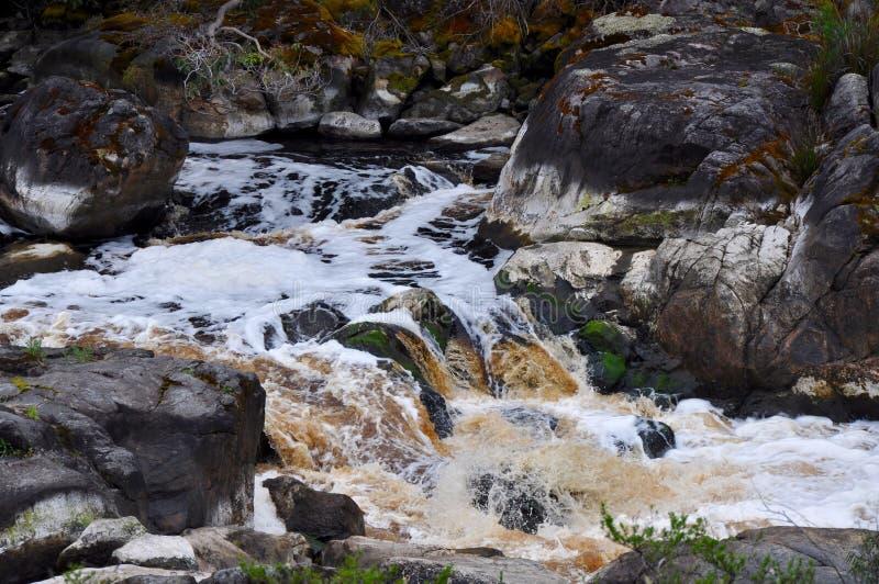 Canal de rio: Cappuccino espumoso associações circulares matizadas, Austrália Ocidental imagens de stock royalty free