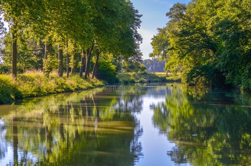Canal du Midi, árboles y agua hermosos, Francia meridional del sicómoro imagenes de archivo