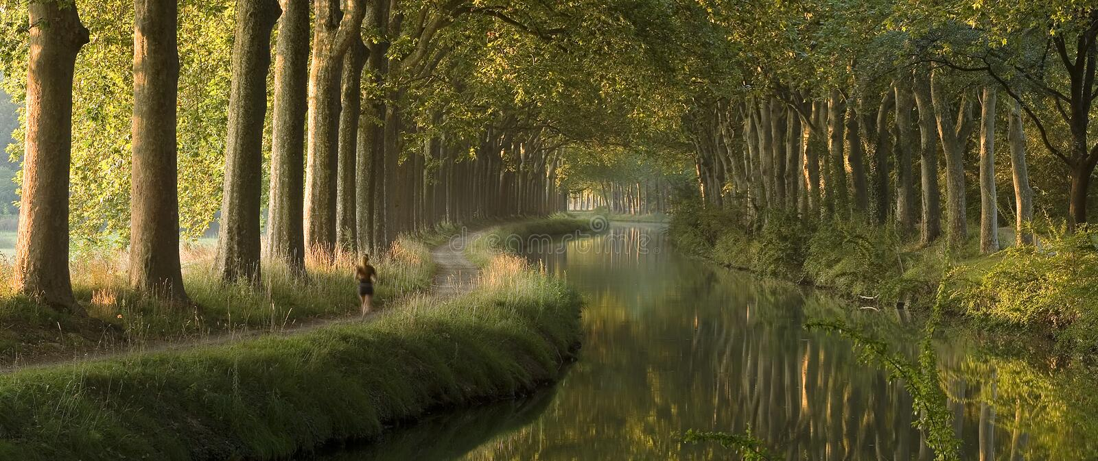 Canal du Midi in the morning (panorama) royalty free stock image