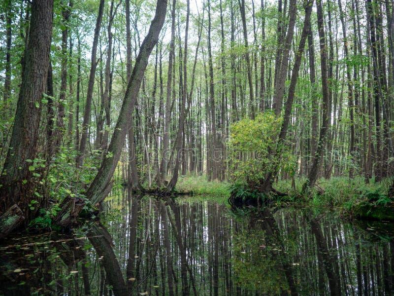 Canal em Mecklenburg foto de stock