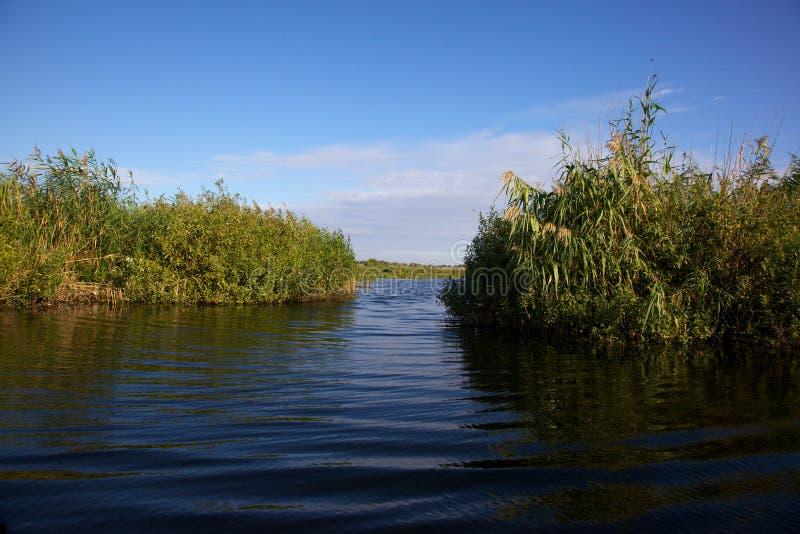 Canal en el delta de Danubio, Rumania fotografía de archivo libre de regalías