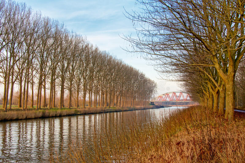 Canal with lines of trees leading to a red arch bridge. Canal in the Flemish countryside with lanes of bare winter trees and a red arch bridge royalty free stock photos