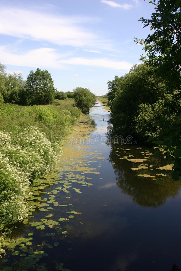 River with marginal plants. River with deep blue still water fringed by floating and marginal plants, and trees with reflections. Background is blue sky with stock photo