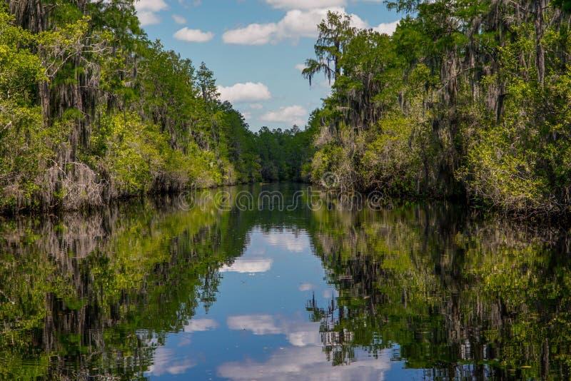 Canal national de réserve d'Okeefenokee photo stock