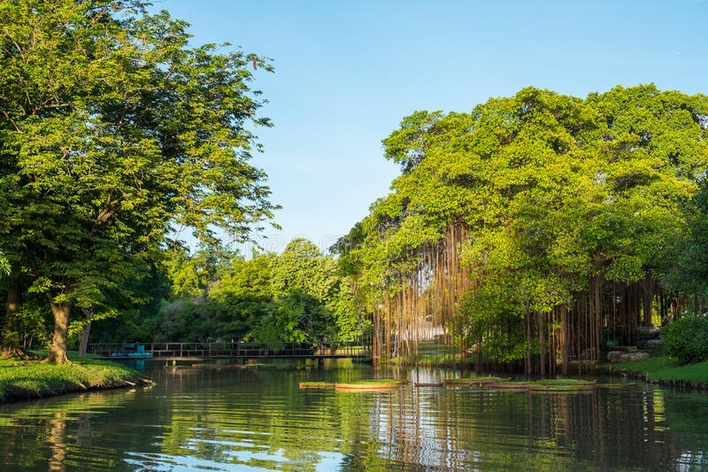 Canal In Suan Luang Rama 9 Park Stock Photo