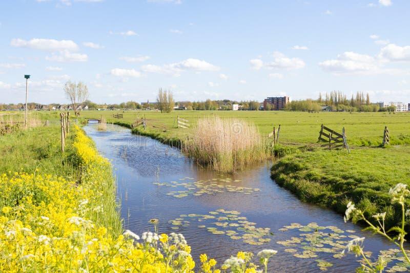 Canale idrico in Kinderdijk, Olanda fotografia stock libera da diritti