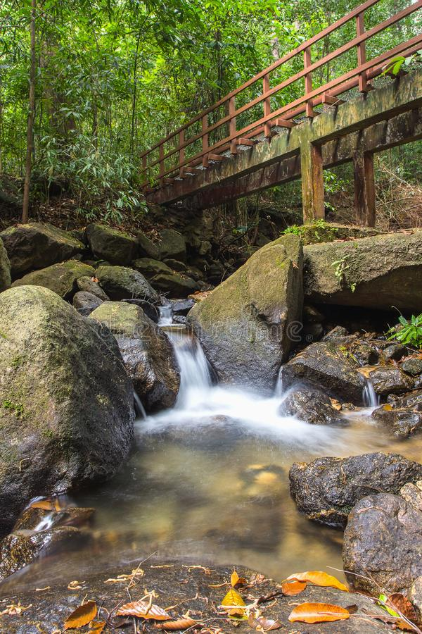 Canale navigabile che scorre lungo la foresta in Ranong, Tailandia fotografia stock