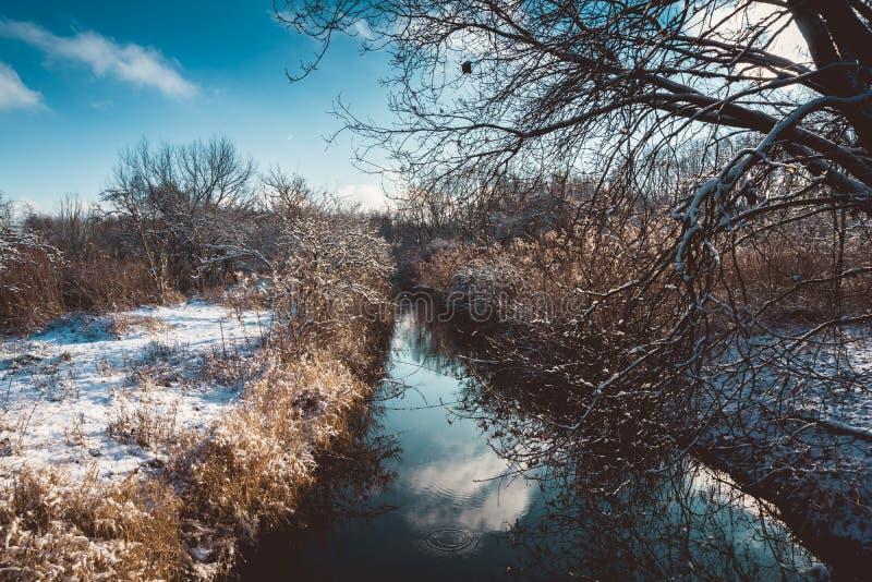 Canale stretto attraverso il campo invaso nell'inverno fotografia stock libera da diritti