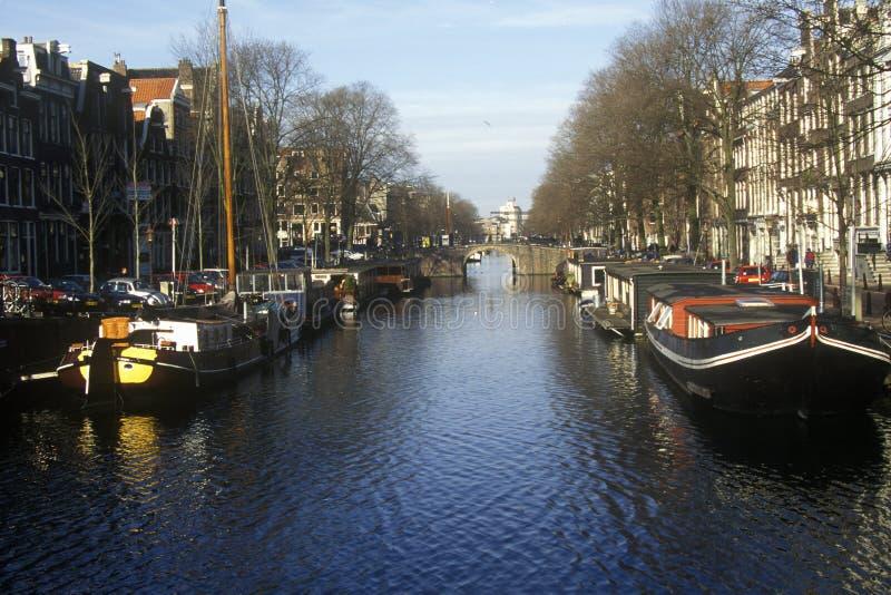 Canali e case galleggianti a Amsterdam, Olanda immagine stock