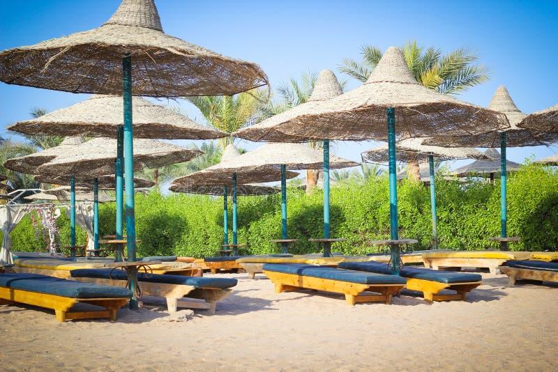 Canapés de Sun sur la plage sans personnes, belle vue pendant le début de la matinée photos libres de droits
