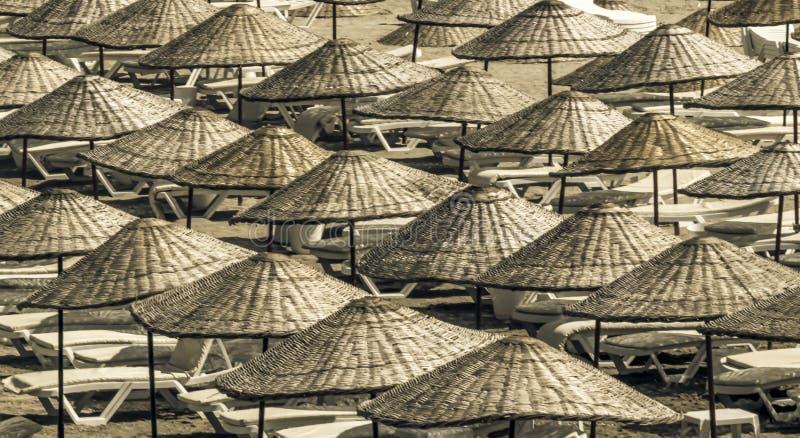 Canapés et parapluies de Sun sur la plage un matin ensoleillé d'été Vue de ci-avant image libre de droits