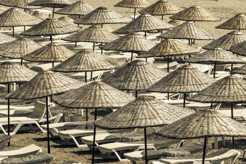 Canapés et parapluies de Sun sur la plage vide un matin ensoleillé d'été Vue de ci-avant photographie stock libre de droits
