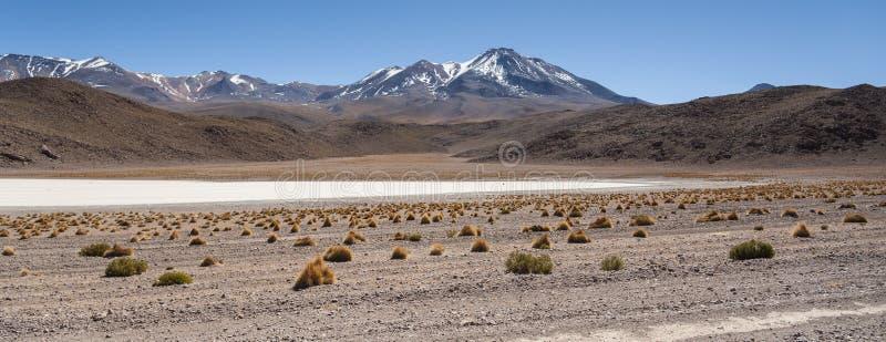 Canapa盐水湖拉古纳Canapa在平Uyuni的盐附近的安第斯山,玻利维亚风景风景, 图库摄影